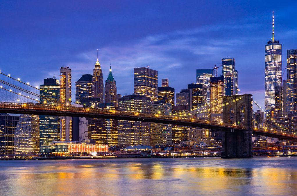Nueva York aprueba ley que exige edificios seguros para las aves